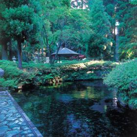 Shirakawa Suigen (Spring Source)