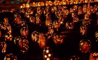 TAKEO ・ Hiryugama Lantern Festival