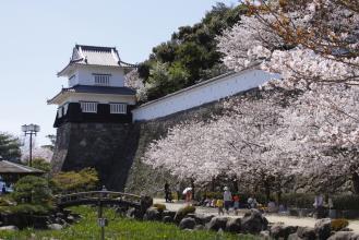 Omura Castle (Kushima Castle Ruins)