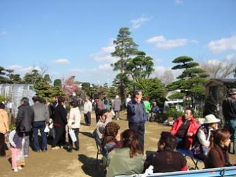 Kumamoto Spring Ueki Market