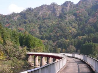 Maple Yaba Cycling Road