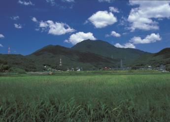 Mt. Homan