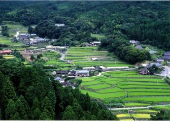 Terraced rice fileds in Take area