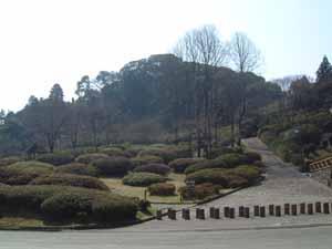 Kurume Forest Azalea Park