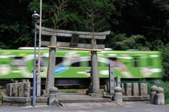 A train that runs through shrine grounds