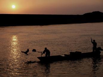 Harazuru's Summer Seasonal Scenery  Ukai Fishing
