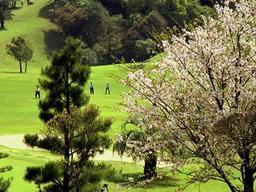 Miyazaki Zaronbai Golf Course